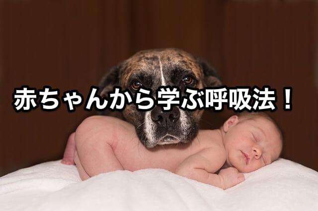 赤ちゃんから学ぶ呼吸法!