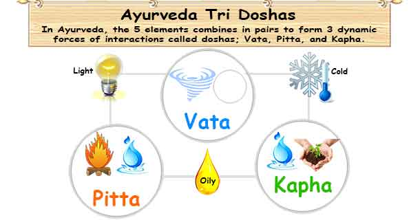 Ayurvedic Doshas | Vata Pitta Kapha