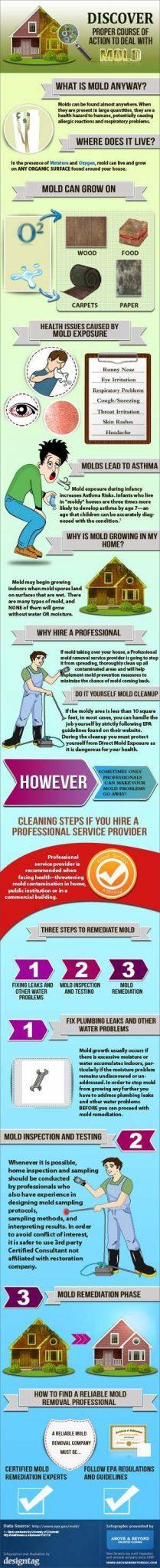 Mold Prevention Summary!