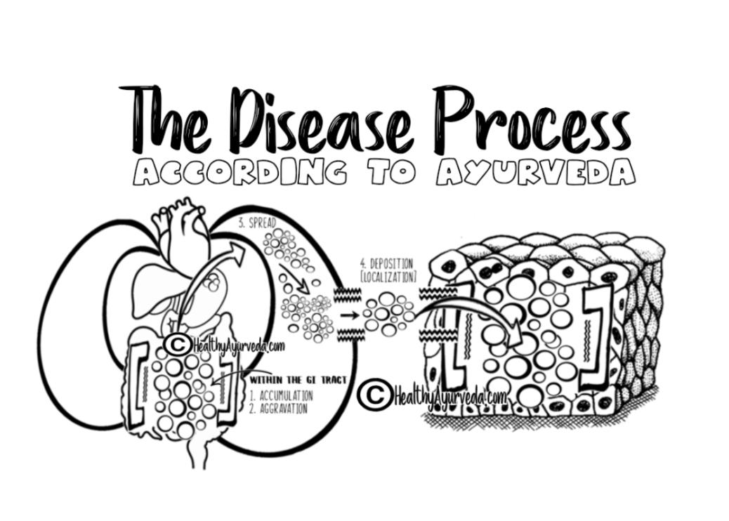Samprapti ~ The Disease Process According To Ayurveda