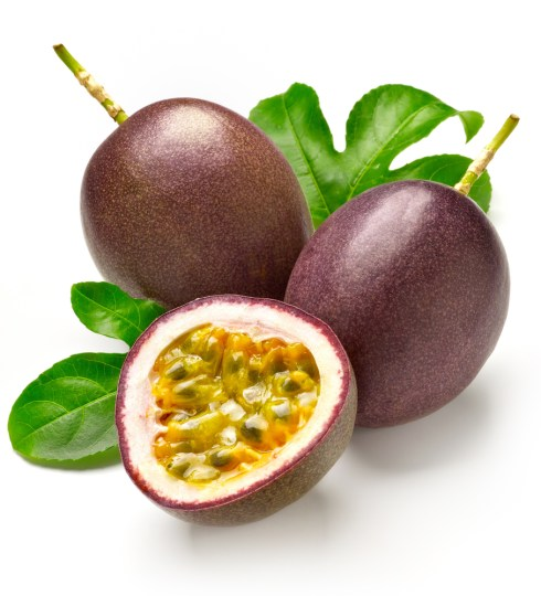 Passion Fruit‏
