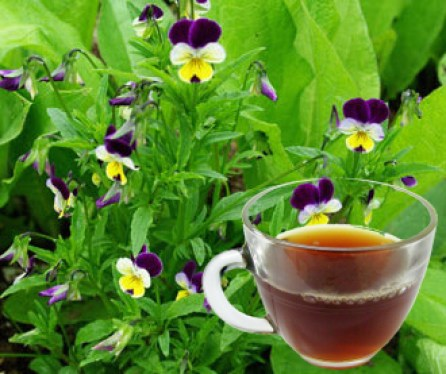 Heartsease Herb Tea