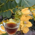 Senna Herb Tea