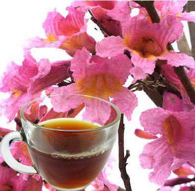 Pau d'arco herb Tea