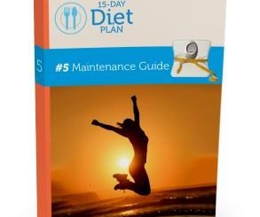Maintenance-Guide-22212
