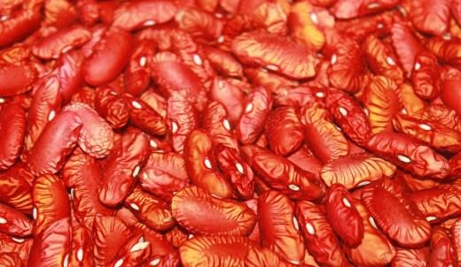 beans-519925_960_720