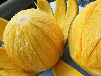 bambangan-fruit-3903572_960_7203