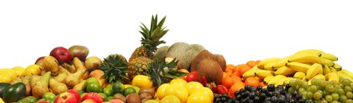 Fruit_Banner_506