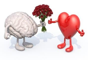 Healthy Brains Rely On Healthy Hearts