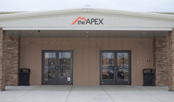 The APEX Picture