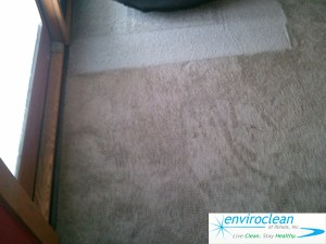 Carpet Cleaning Pingree Grove