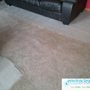 Carpet Cleaning Pingree Grove IL