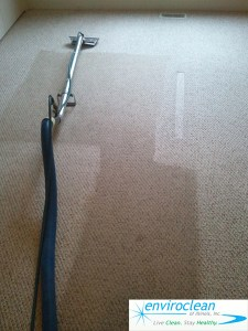 Carpet Cleaning in Bartlett IL