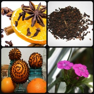 Cloves-and-spices