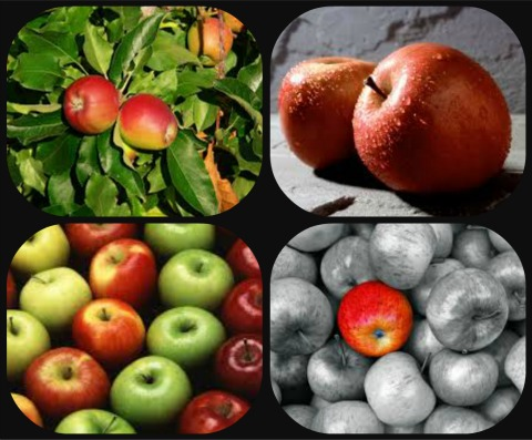 apple-healthy-fruits
