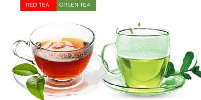 WHY RED TEA IS BETTER THAN GREEN TEA 15
