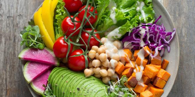 Is a plant-based diet sufficient to enrich the human body with proteins?