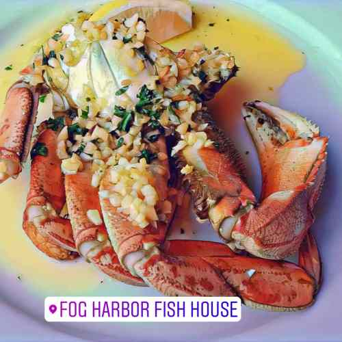 FOG HARBOR FISHHOUSE