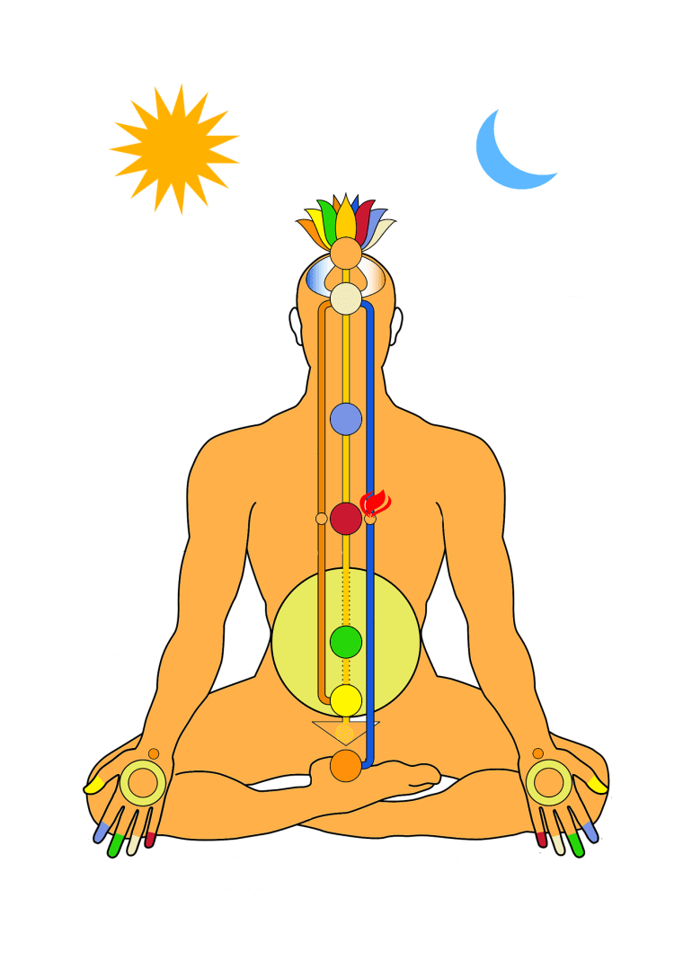 "Why are chakras so important to our well-being?<span class=""rating-result after_title mr-filter rating-result-4650"" >			<span class=""no-rating-results-text"">No ratings yet.</span>		</span>"
