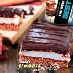 S'mores protein Cake Bar