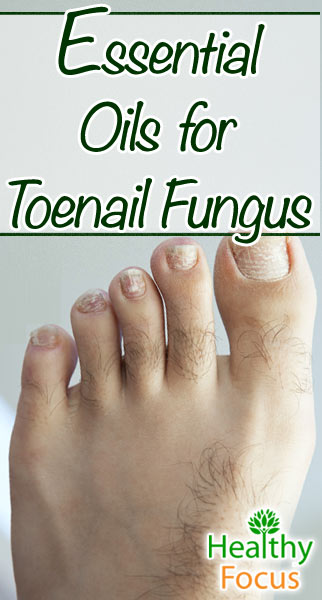 9 essential oils for toenail fungus healthy focus thyme essential oil is another well known remedy for toenail fungus thyme oil contains thymol which is a well known antiseptic often found in medicinal sciox Gallery
