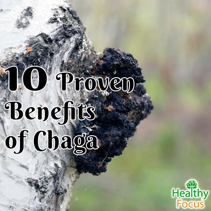 hdr-10-Proven-Benefits-of-Chaga