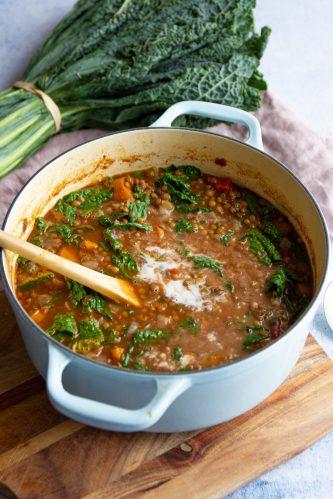 healthy vegan lentil stew recipe
