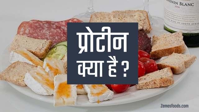Protein in Hindi