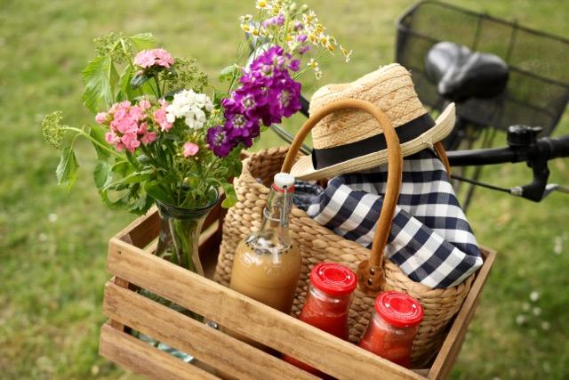 vegan & nachhaltig picknicken - Fahrradkorb www.healthyhappysteffi.com
