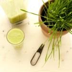 Weizengras-Smoothie