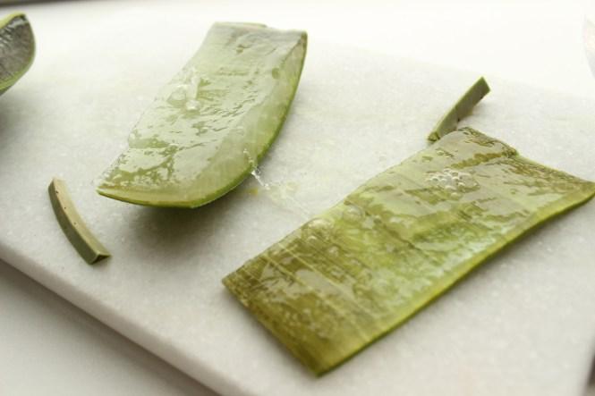 Das Gel der Aloe Vera ist richtig gesund