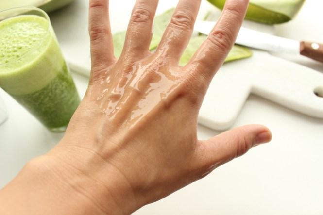Aloe Vera ist super für die Haut