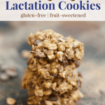 Vegan Lactation Cookies [gluten-free + fruit-sweetened]