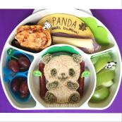 Panda Facts Lunch
