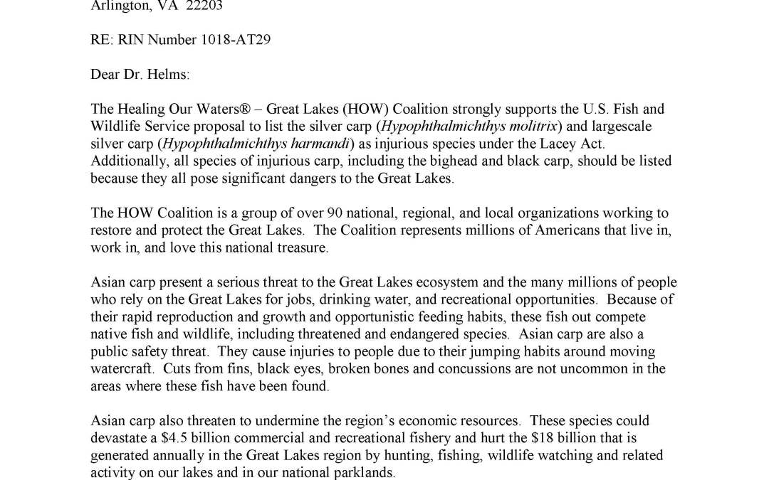 Coalition and others to the U.S. Fish and Wildlife Service regarding Asian carp