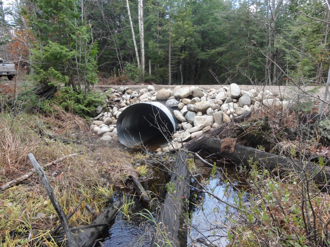 culvert following restoration