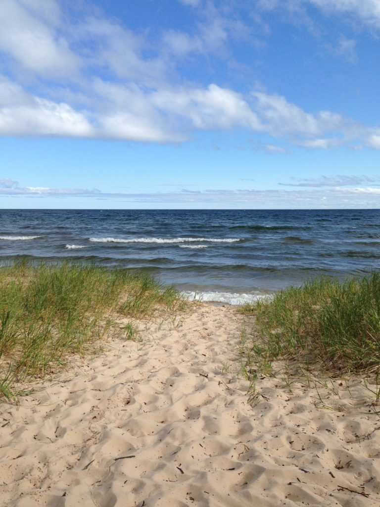 Michigan beach with dune grasses.