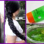 ALOE VERA GEL FOR HAIR GROWTH!