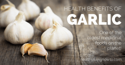 Health Benefits of Garlic | healthylivinghowto.com