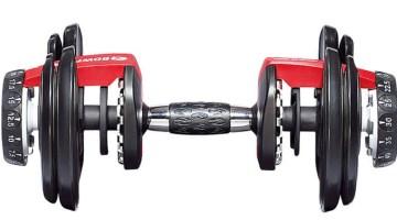 BowFlex 552I dumbbells