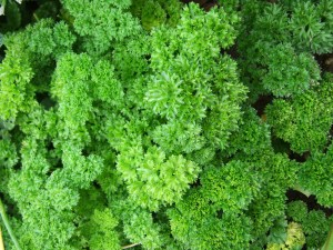 Parsley can help to reduce blood pressure.