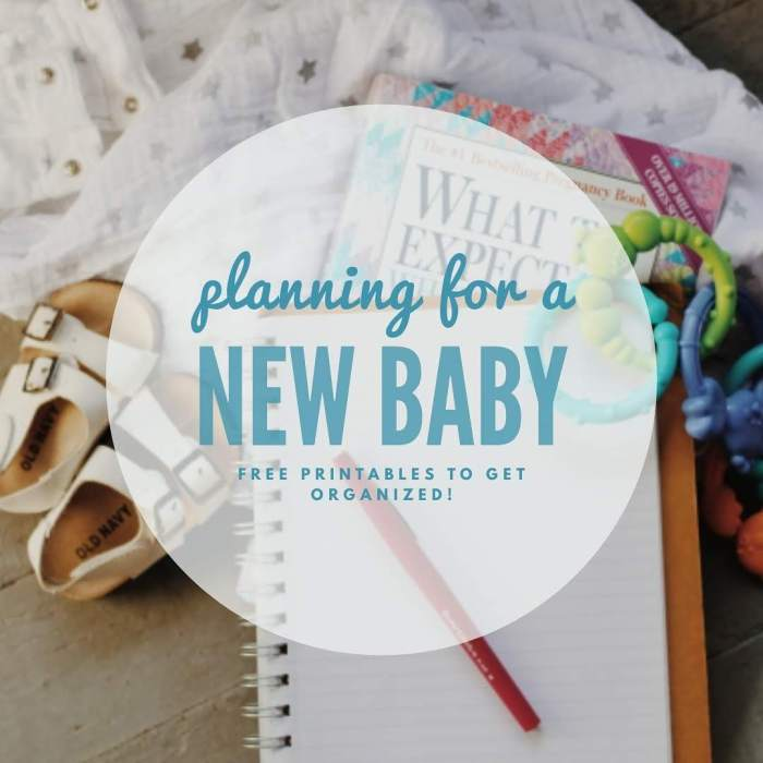 Planning for a New Baby? Here are some FREE printables and planning resources to help!