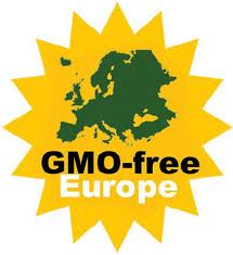 GMO government regulation