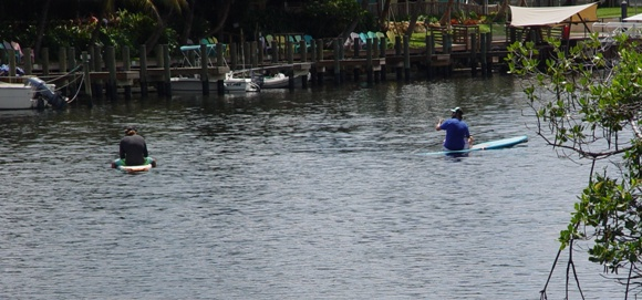 Paddle Boarders at Burt Reynolds Pak in the Lake Worth River