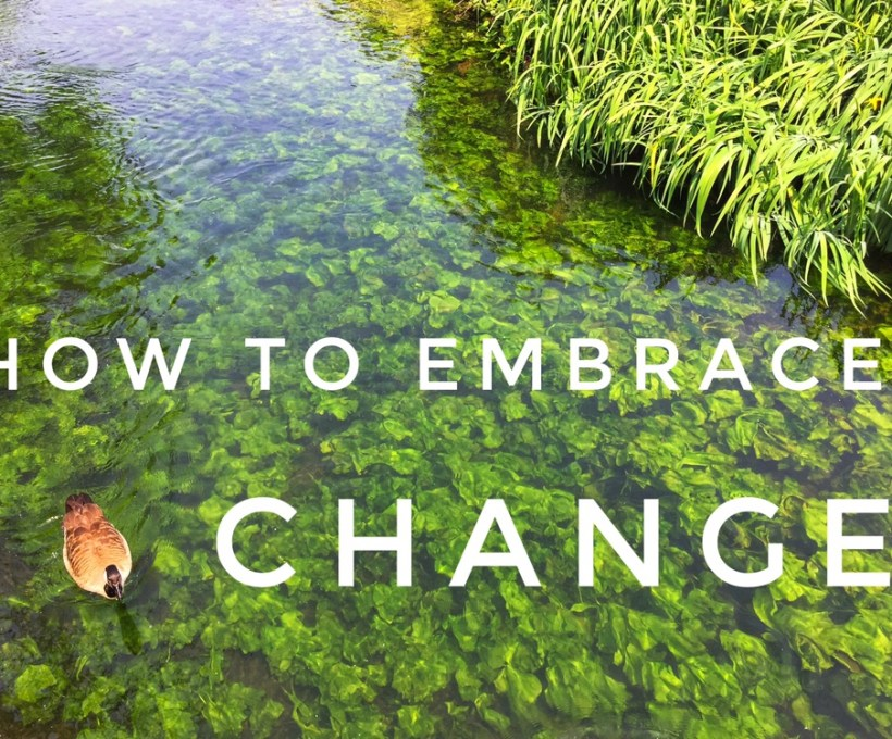 How to Embrace Change