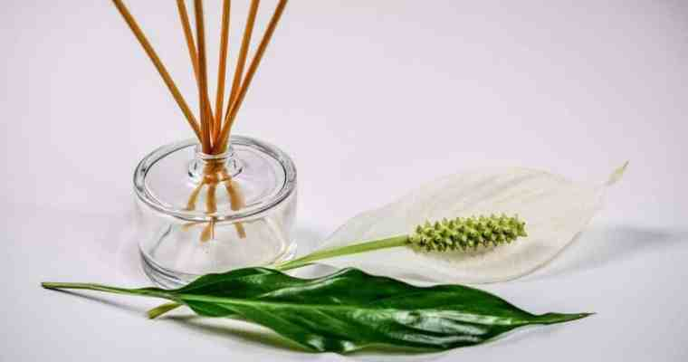 What is an Aromatherapy Diffuser – Aromatherapy Essential Oils Guide