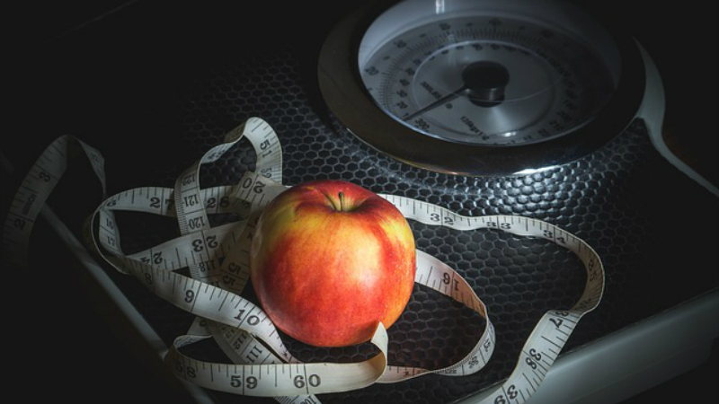 Losing Weight the Healthy Way is the Best Way