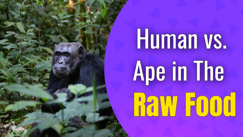 Human vs. Ape in the Raw Food Diet