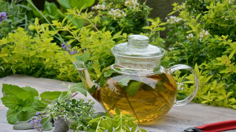 Herbal Teas vs Tisanes