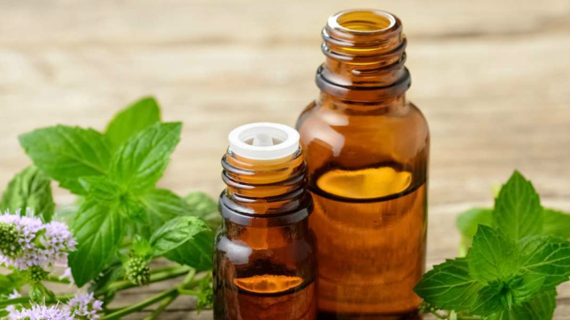 Herbs That Can Knock Out Pain